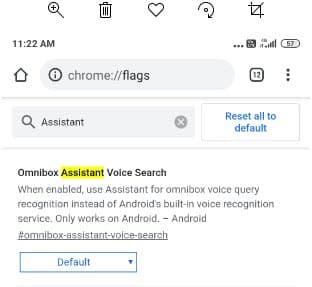 Omnibox-Assitant-Voice-Search-flag.jpg