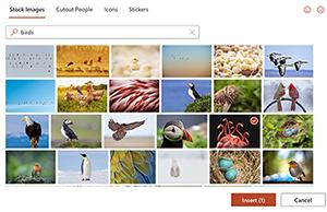 库存图片显示各种各样的照片的箱子。