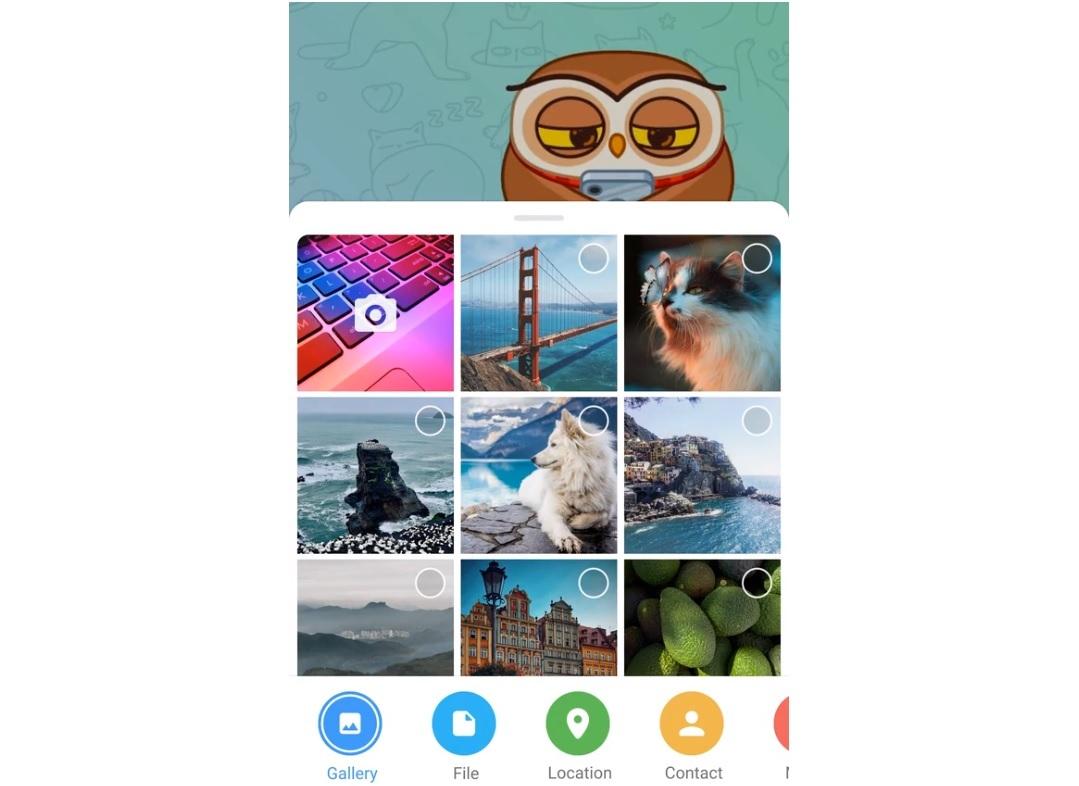 Android Telegram应用程序具有一个可爱的新文件附件界面-Telegram将加入视频通话应用程序的革命,宣布新功能并吸引4亿用户