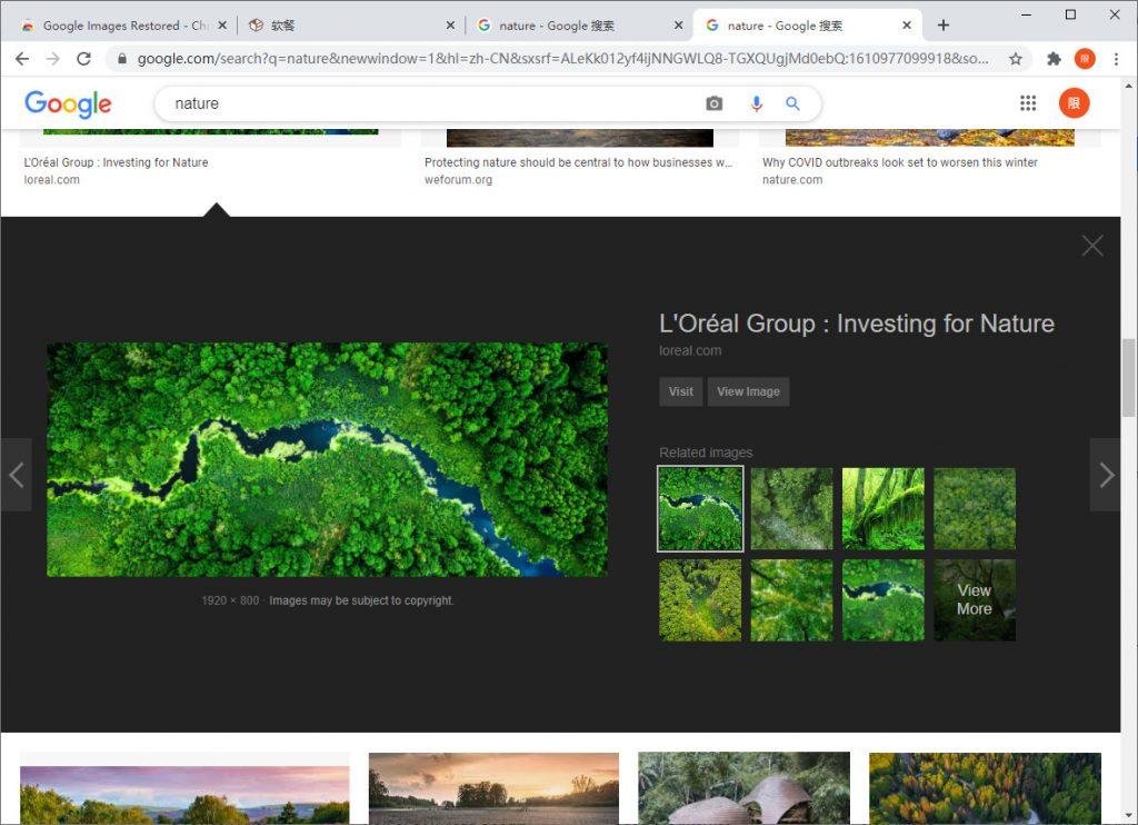 用这枚扩展,恢复谷歌图片搜索中的「查看图片」功能