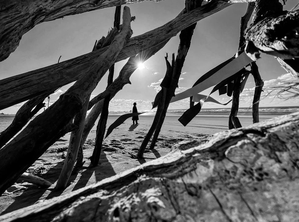 图的黑白照片,可见通过浮木的格子,站在海滩上。