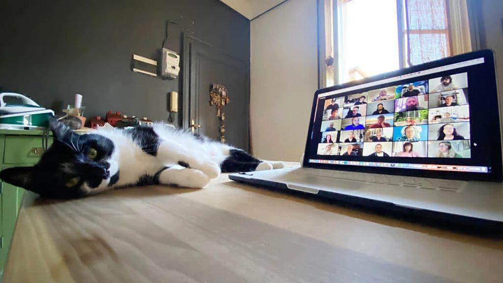Zoom Escaper:让你「勉为其难」地退出在线会议